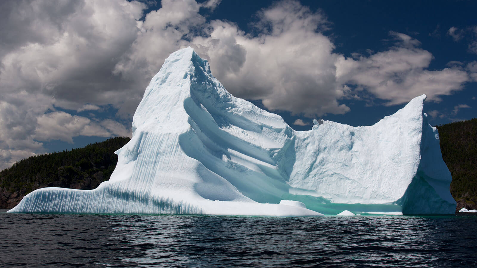 6 Ways to Enjoy Iceberg Season in St. John's - image
