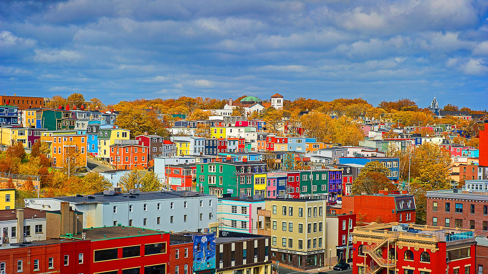 Colourful Fall Adventures<br>in St. John's - image