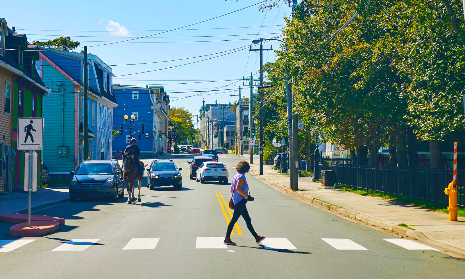 10 Places/Things to Photograph<br>in St. John's - image