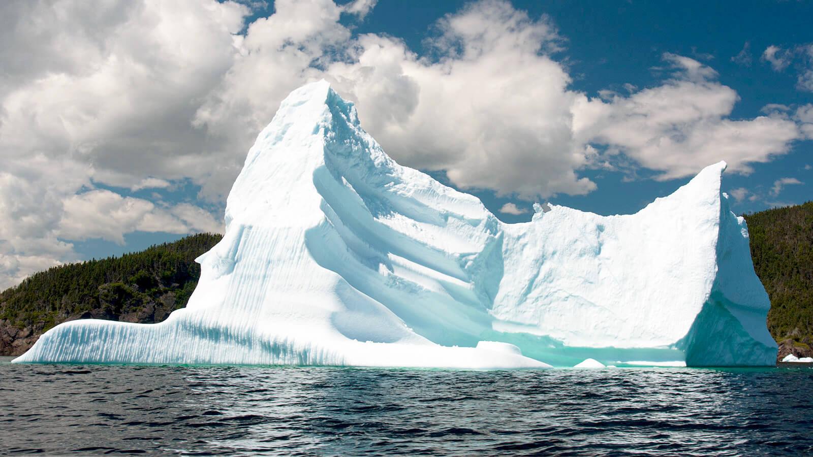 6 Ways to Enjoy Iceberg Season<br>in St. John's - image