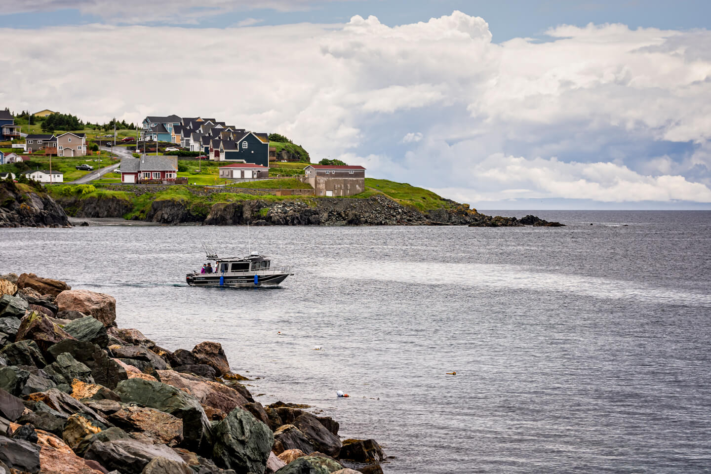 6 Late Summer Experiences to Explore Our Shores - image