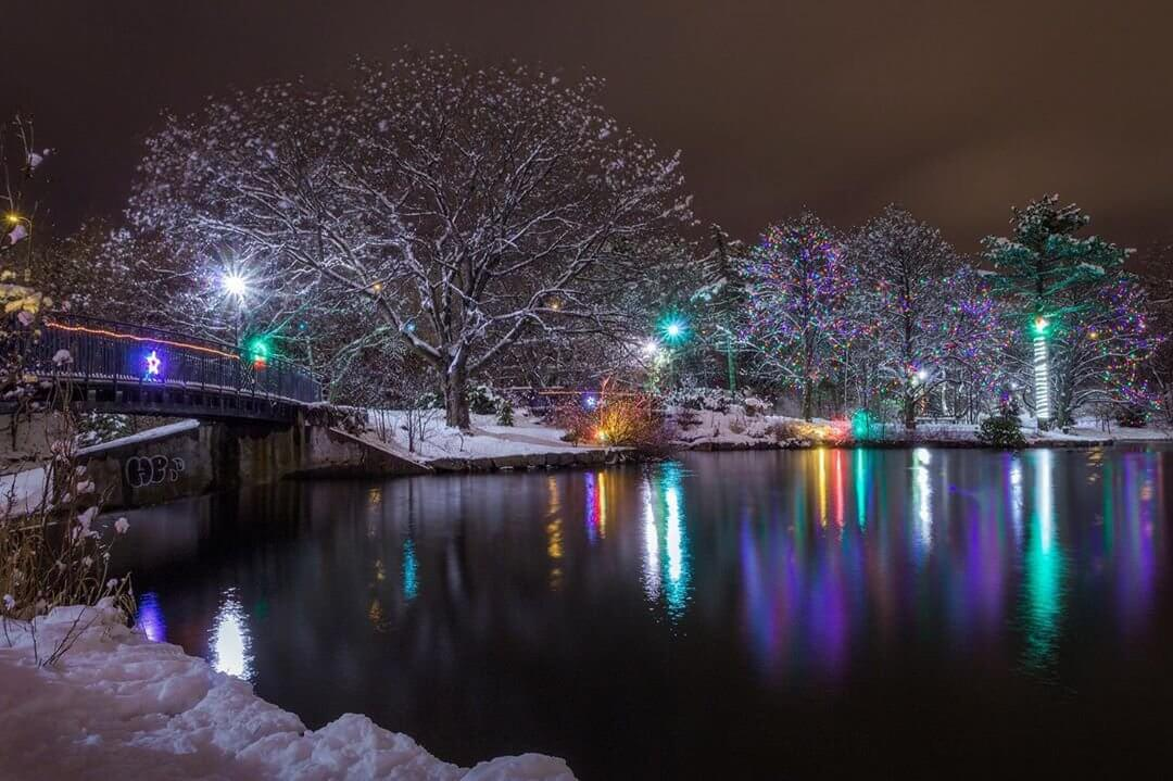 6 Winter Activities To Get Into the Holiday Spirit - image