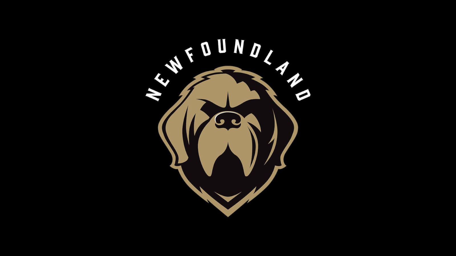 Newfoundland Growlers vs Brampton Beast