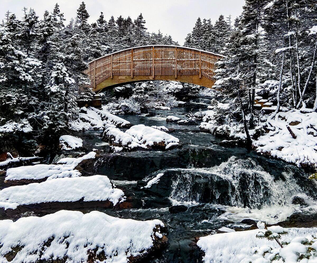 4 Must See Bridges - image